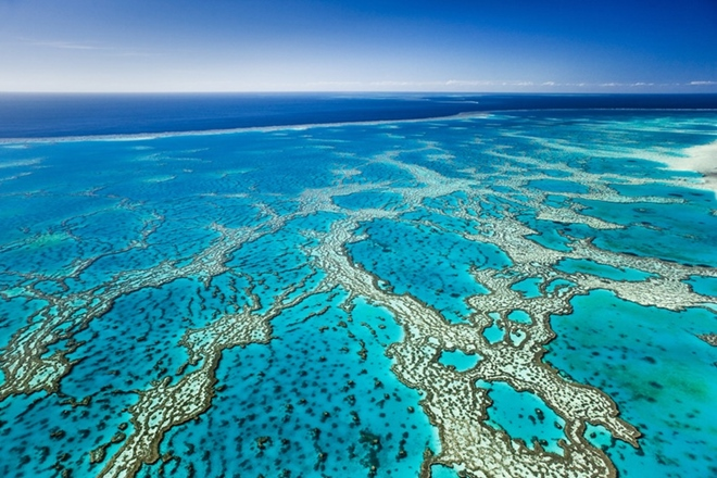 great barrier reef smart
