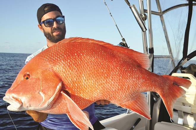 big red fish red emperor