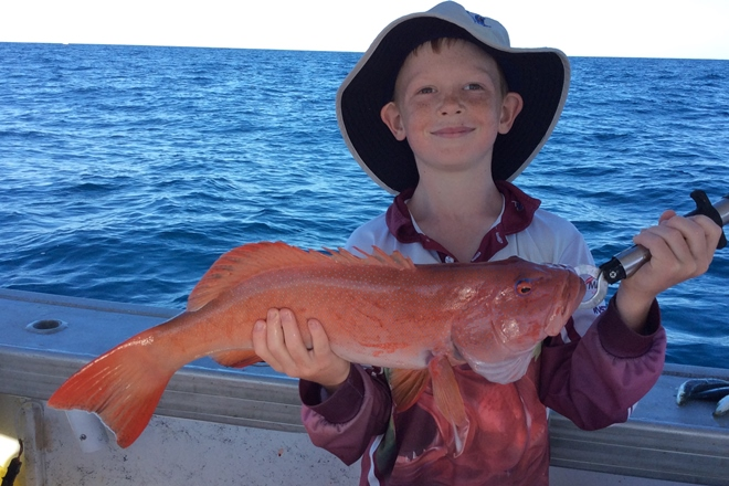 summer coral trout