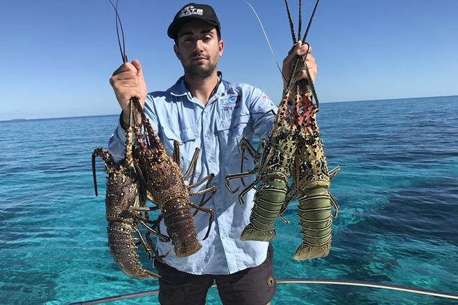 bunker group reefs crayfish