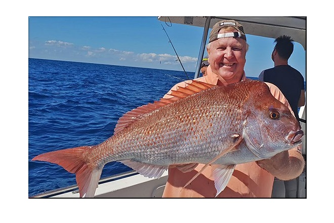perfect time for snapper noosa
