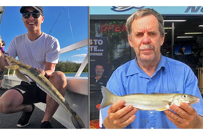 Photo: fishingnoosa.com.au