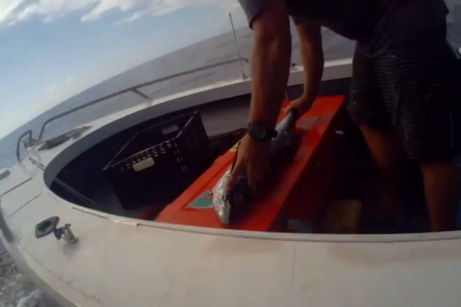 body cameras fisheries qld
