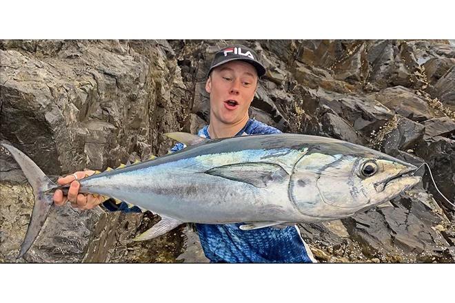 jewies tuna mackerel sunny coast