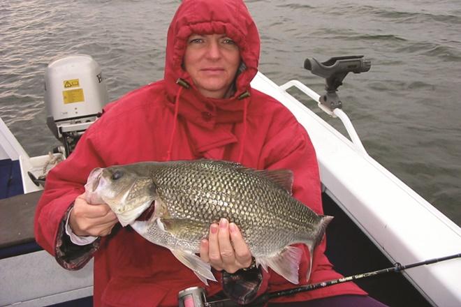 impoundment bass fishing southeast queensland