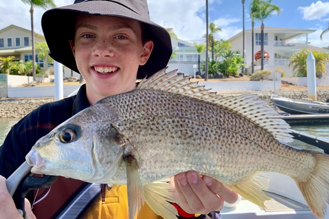 fish spread out gold coast