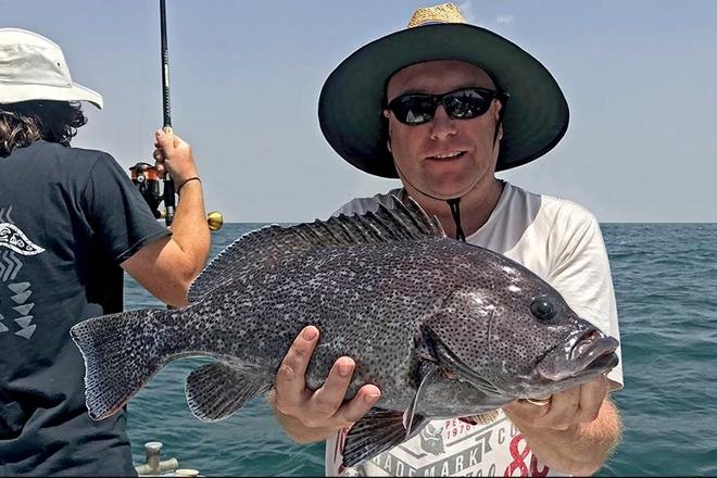 deeper water fish noosa