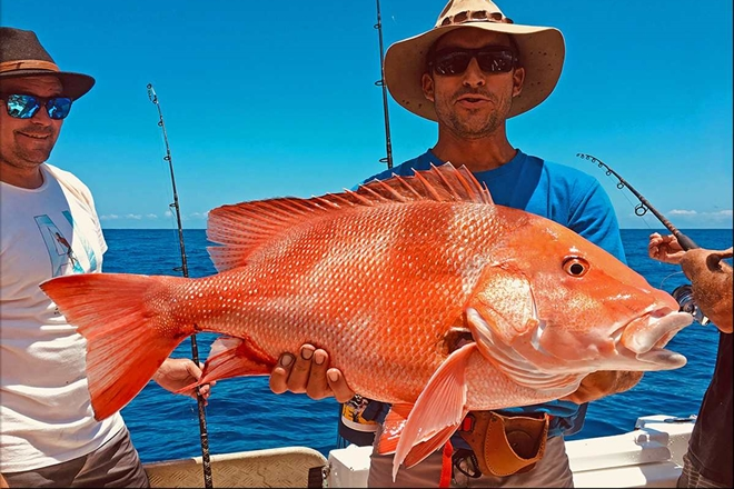 big rainfalls sunshine coast red emperor