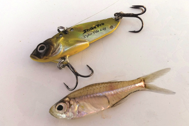 using vibration lures