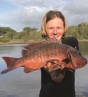 fishing autumn noosa