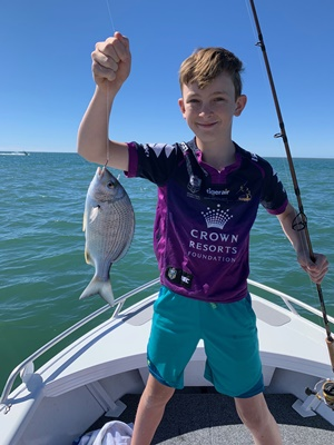 fishing mullet schools gold coast