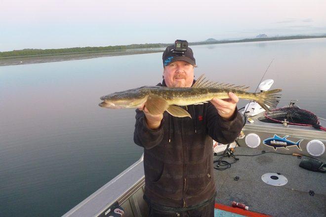 Deep edge flathead fishing fun