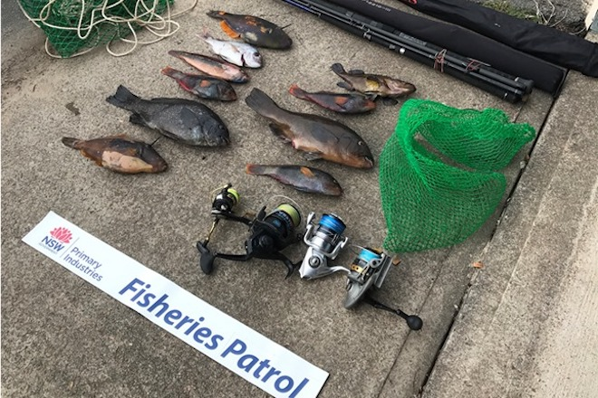 Fisheries crack down on illegal fishing in lockdown